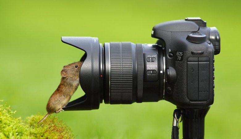 قیمت دوربین عکاسی ارزان