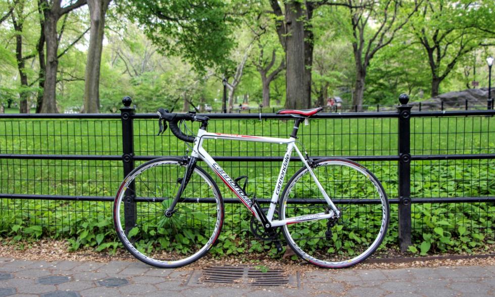 دوچرخه پارک